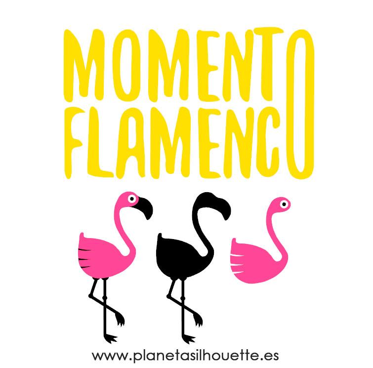 MomentoFlamenco-Elementos